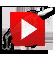 P300D Series Video